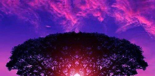 mindfulness-is-not-spiritual