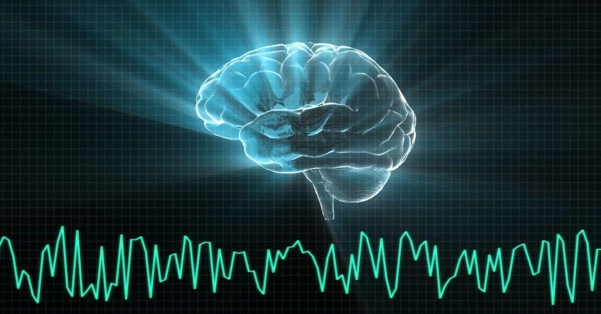 meditation changes the brain