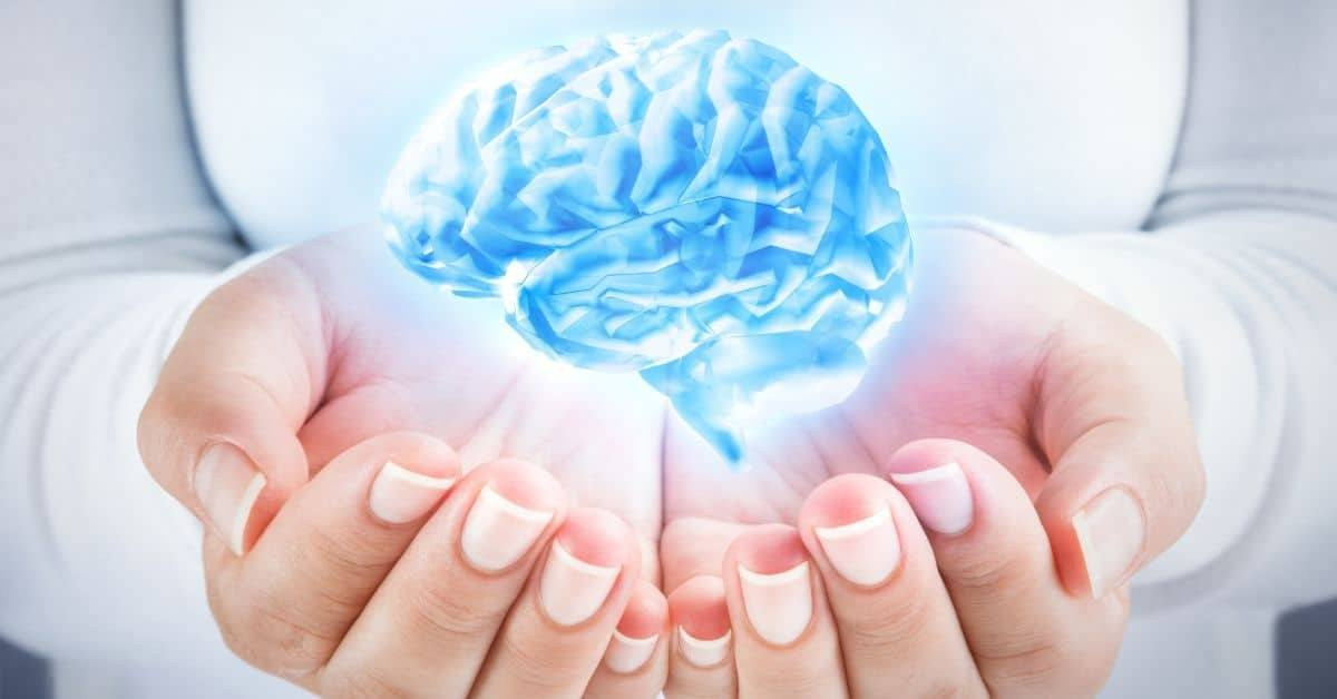 meditation sculpts the brain